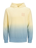 Jack & Jones Burn Sweat Hoodie gelb/blau
