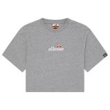 Ellesse Fireball T-Shirt grau