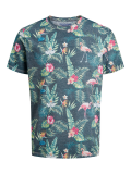 Jack & Jones Tropical Birds T-Shirt grau