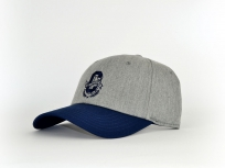 Cayler & Sons Frat Boy Cap grey / blue Snapback